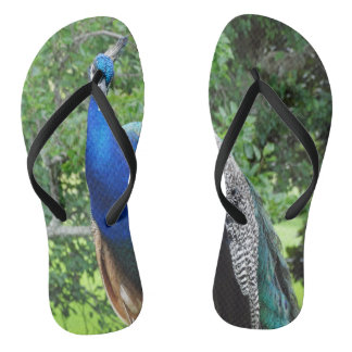 cool peafowl jandals