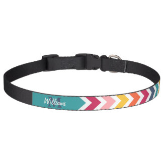 Cool trendy colourful custom Monogram chevron Pet Collars