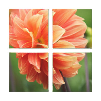 Coral Flower Canvas Print