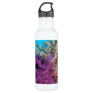 Coral Reef Habitat 710 Ml Water Bottle