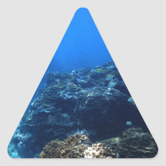 Coral Reef of Bakaro Beach Triangle Sticker