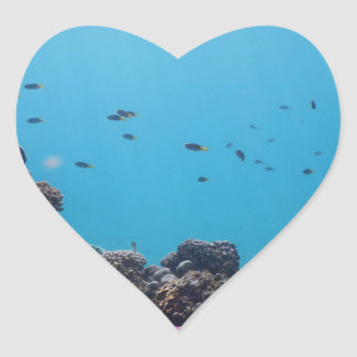 Coral Reef of Pacific Ocean Heart Sticker