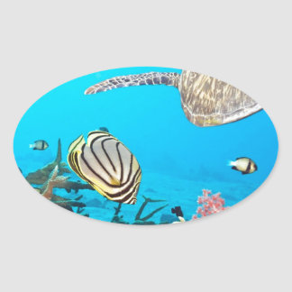 Coral Reef Turtle Naturescape Oval Sticker