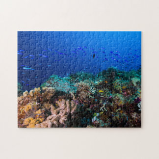 Coral Sea - Tropical Fish and Reef - Jigsaw Puzzle
