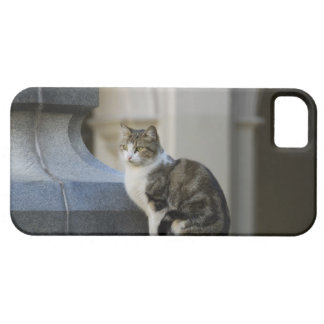 cordoba, argentina barely there iPhone 5 case