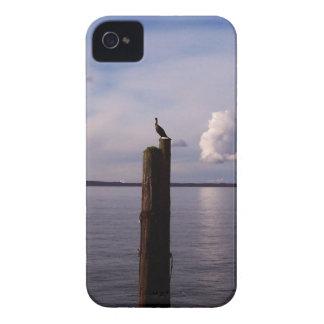 Cormorant On Pole iPhone 4 Case-Mate Case
