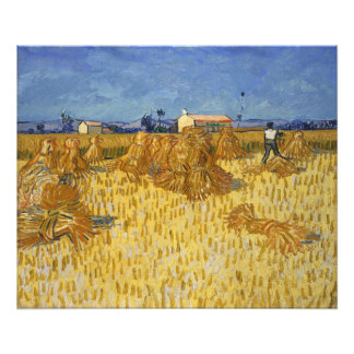 Corn Harvest in Provence by Vincent Van Gogh Photo