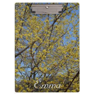 Cornelian Cherry Dogwood and Blue Sky Clipboard