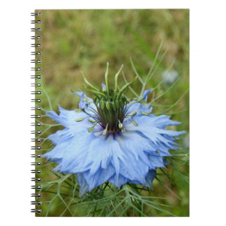 Cornflower Spiral Photo Notebook