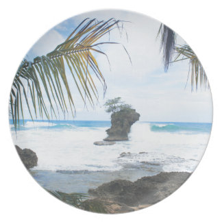 costa rica coast plate