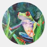 Costa Rica Tree Frog Stickers