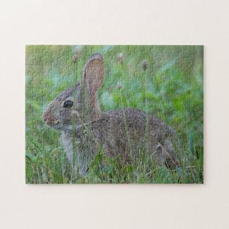 Cottontail rabbit jigsaw puzzle