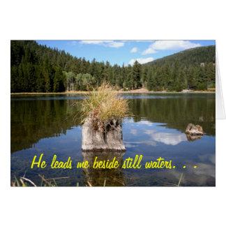 Cottonwood Meadow Lake Card