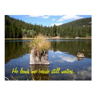 Cottonwood Meadow Lake Post Card