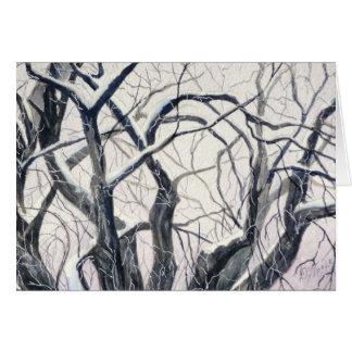Cottonwoods Asleep Winter Greeting Card