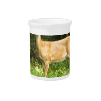 Country Deer Pitcher