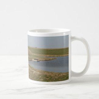 Country Fishing Hole Coffee Mugs