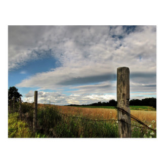 Country Meadow Postcard