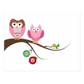 Couple owls post cards