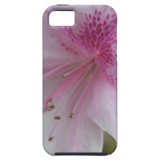 Coversational Flowers iPhone 5/5S Cover