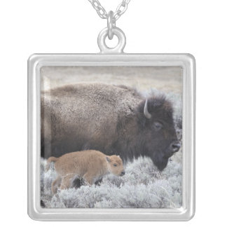 Cow and Calf Bison, Yellowstone 2 Silver Plated Necklace