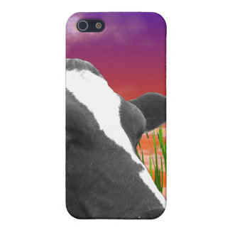 Cow On Grass & Vivid Sunset Sky Cover For iPhone 5/5S
