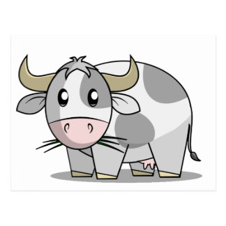 Cow Post Card