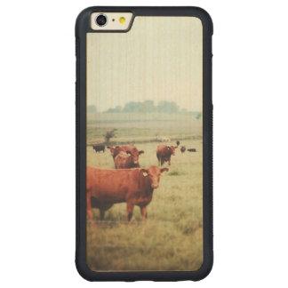 cow-scape carved® maple iPhone 6 plus bumper case