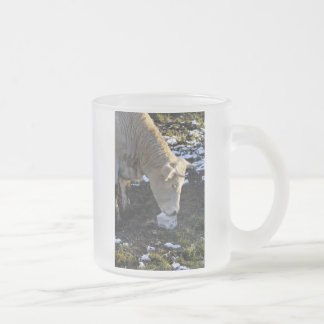 Cow which licking a block salt frosted glass mug