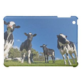 Cows feeding on pasture iPad mini covers