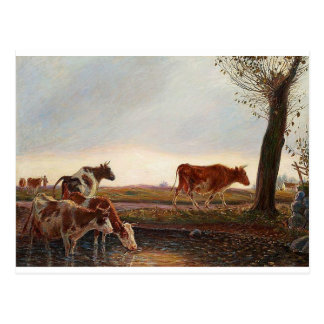 Cows homeward bound in the evening by Theodor Phil Postcard