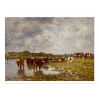 Cows in a Meadow on the Banks of the Toques Postcard