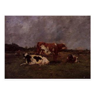 Cows in Pasture by Eugene Boudin Postcard