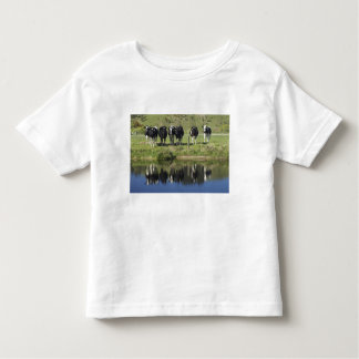 Cows reflected in canal, Henley, Taieri Plain, T-shirt