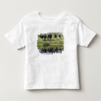 Cows reflected in canal, Henley, Taieri Plain, T Shirts