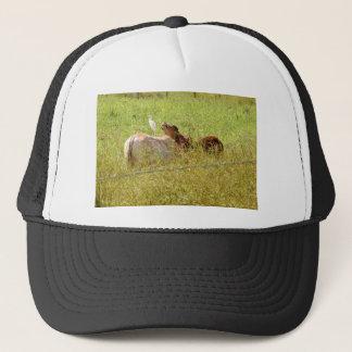 COWS RURAL QUEENSLAND AUSTRALIA TRUCKER HAT
