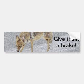 Coyote Bumper Sticker