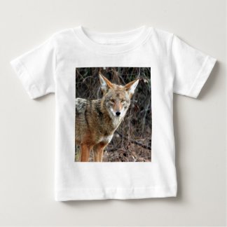 coyote in griffith park 005 shirt