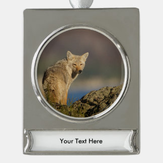 coyote silver plated banner ornament