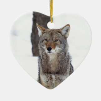 Coyote sitting in the snow christmas ornament