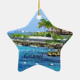 Cozumel Chankanaab Park Travel Christmas Ornament