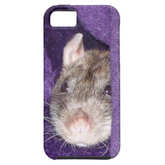 cozy rat iPhone 5 cover