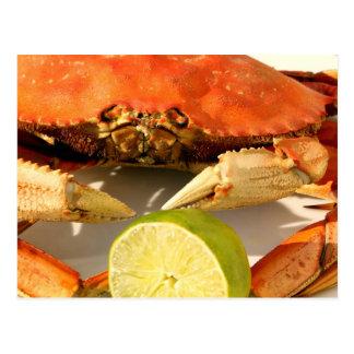 Crab Feast Invitation Postcard