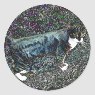 Crackers the Cat Round Sticker