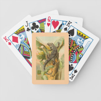 Crawling Iguana Lizard Banana Palm Wildlife Cards