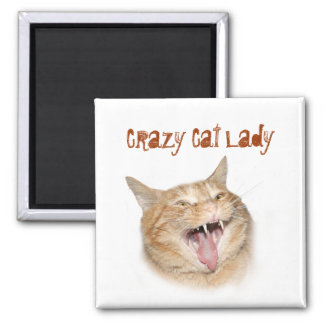 Crazy Cat Lady Fridge Magnets