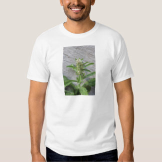 Crazy Weed Plant T Shirts