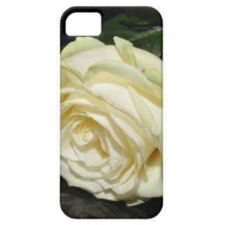 Cream Rose Barely There iPhone 5 Case