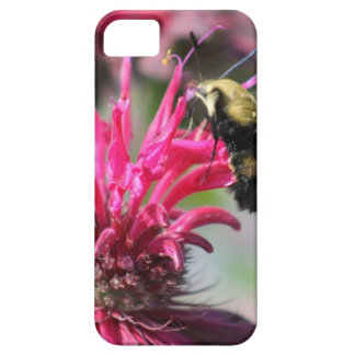 Crepe Myrtle Bloom Case For The iPhone 5
