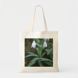 Crimean Snowdrop Closeup Tote Bag